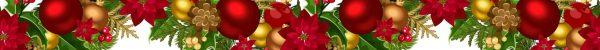 ChristmasFrond